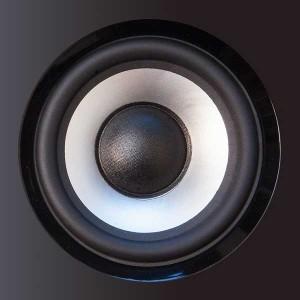 Studiomonitore und Kopfhörer - Tauchspulenlautsprecher
